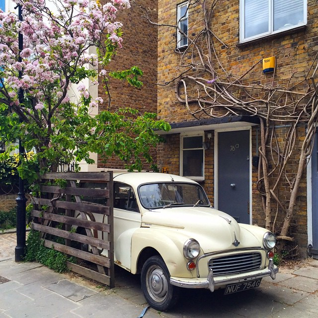 What a beauty  #floresemnottinghill #nottinghill #portobelloroad #portobello #vintage #beautiful #igerslondon #ig_london #maybeldner #ilovelondon #lovegreatbritain #londontips #bestoflondon #londres #london